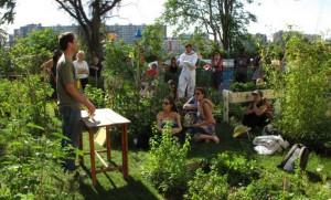 Les créations d'espace de Jardins partagés se multiplient dans les villes… pourquoi pas à la Croix de Pierre ? (ici à Paris (18°))