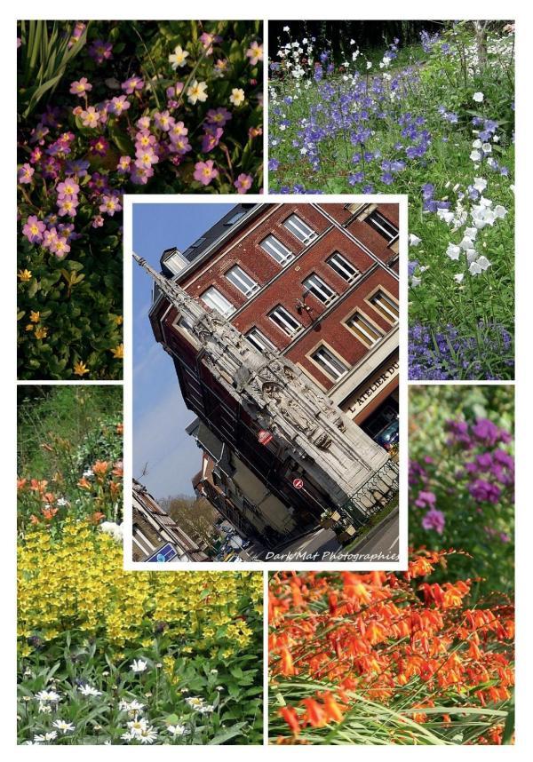 Fete des Jardins 8 juin 2014